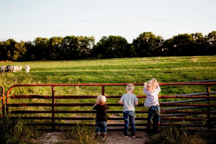 pasture grazed farm kids